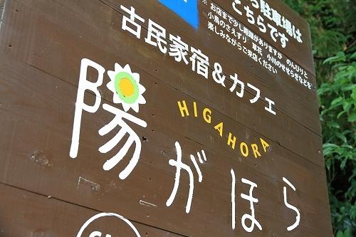 higahora001.jpg