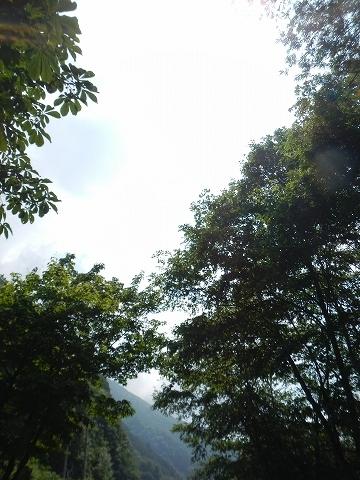 k4d-059.jpg