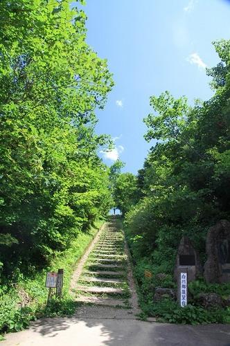 yamanaka024.jpg